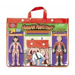 T.S. Shure Detská magnetická skladačka z dreva - obliekanie postavičiek - Ľudské telo