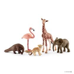 Schleich 42388 sada divokých voľne žijúcich zvierat 5 ks