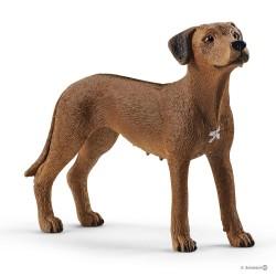 Schleich 13895 africký leví pes Rodézsky ridgeback