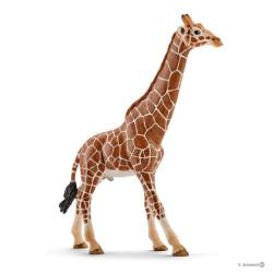 Schleich 14749 divoké zvieratko žirafa štíhla samec