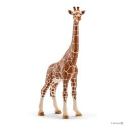 Schleich 14750 divoké zvieratko žirafa štíhla samica