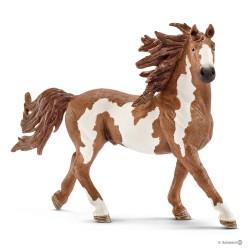 Schleich 13794 domáce zvieratko kôň Pinto žrebec