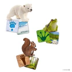 Schleich 42474 vzdelávacie kartičky Wild Life Schleich®