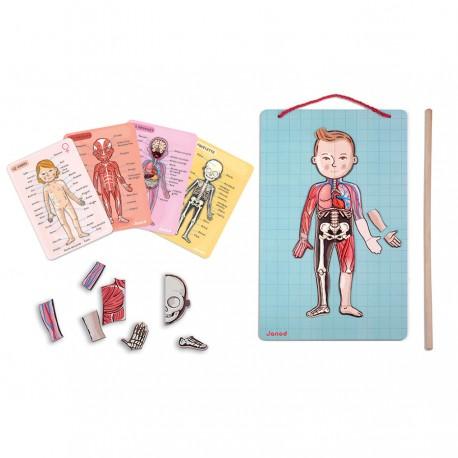 JANOD detská magnetická anatómia Ľudské telo