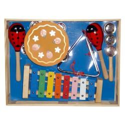 Sada detských hudobných nástrojov - Lienky