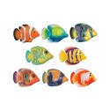 Ryby a rybky