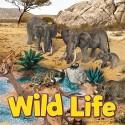 Schleich Wild Life Safari figúrky